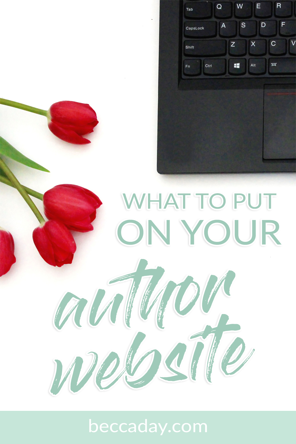 What To Put On Your Author Website