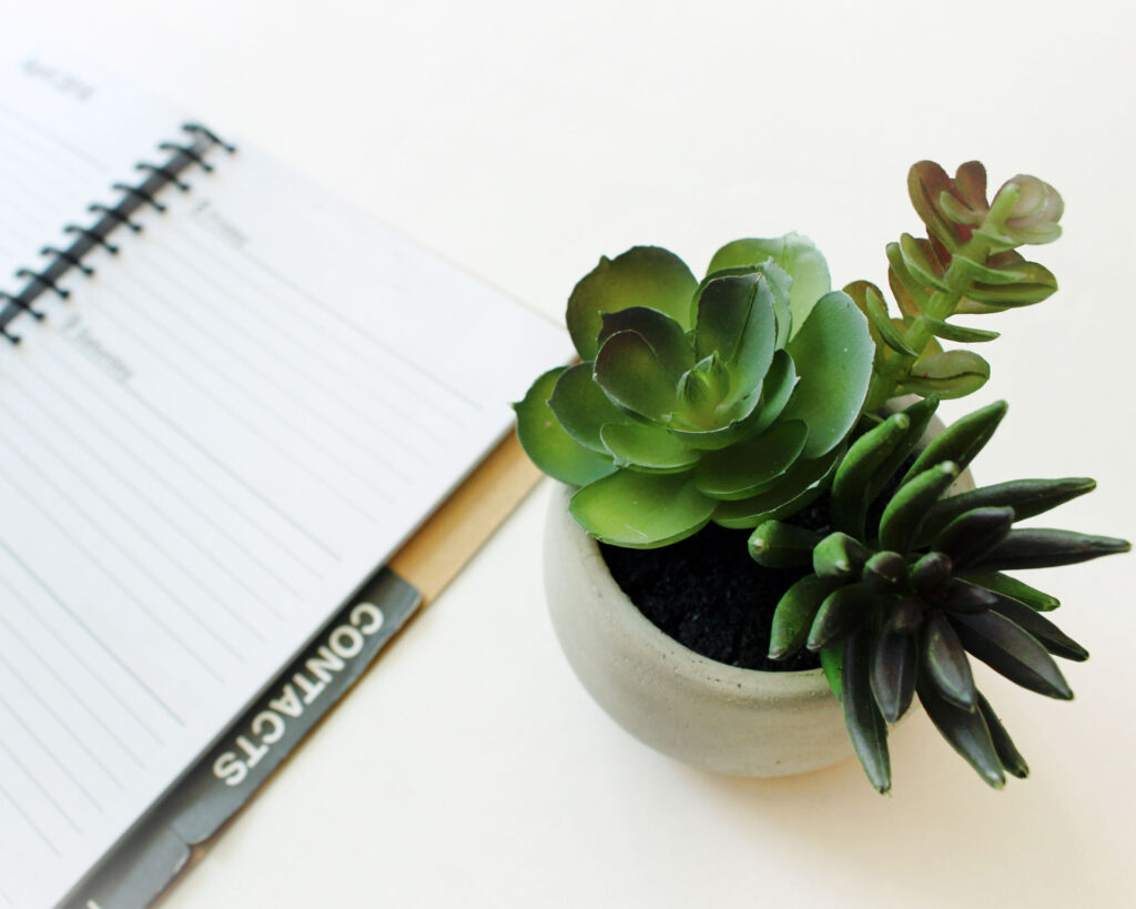 Contacts book for tracking literary agent queries sitting on a white desk next to a succulent